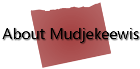 About Mudjekeewis: Spirit Keeper of the West Wind