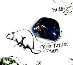 Frogs Return Moon Crystal on the Medicine Wheel
