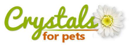 Crystals for Pets