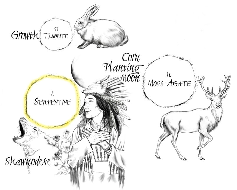 Shawnodese Spirit Keeper of the South Location on The Native American Medicine Wheel