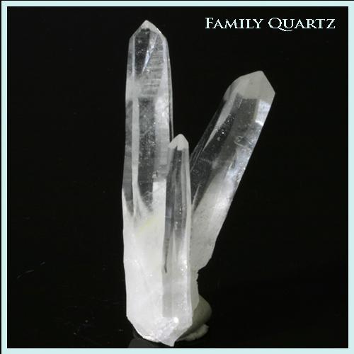Family quartz